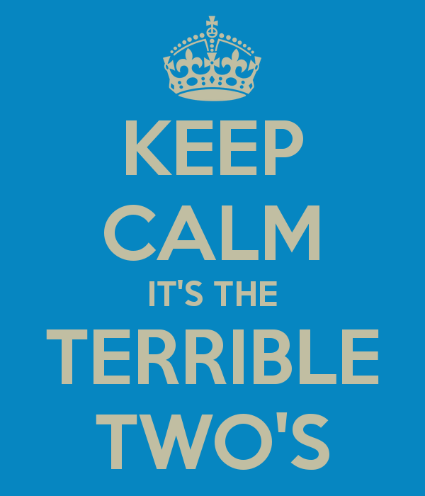 keep-calm-it-s-the-terrible-two-s